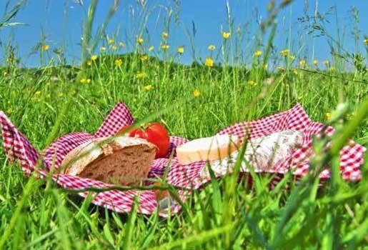 Reserveer voor de picknick 2 september op het gors.